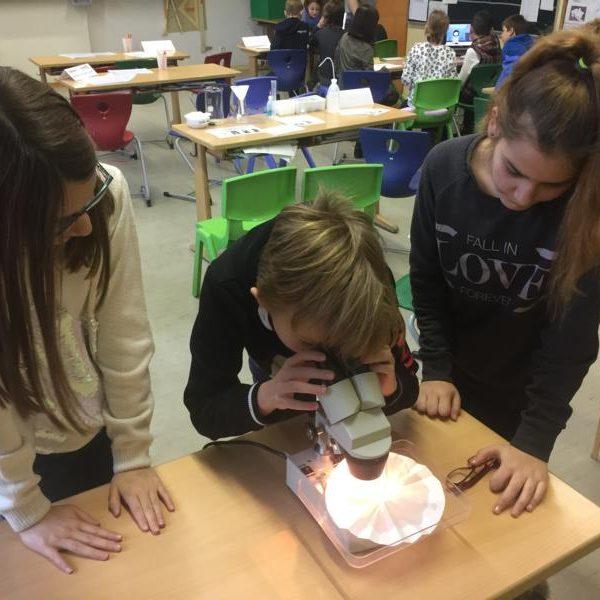 drei Kinder bei der Forschung mit Mikroskop
