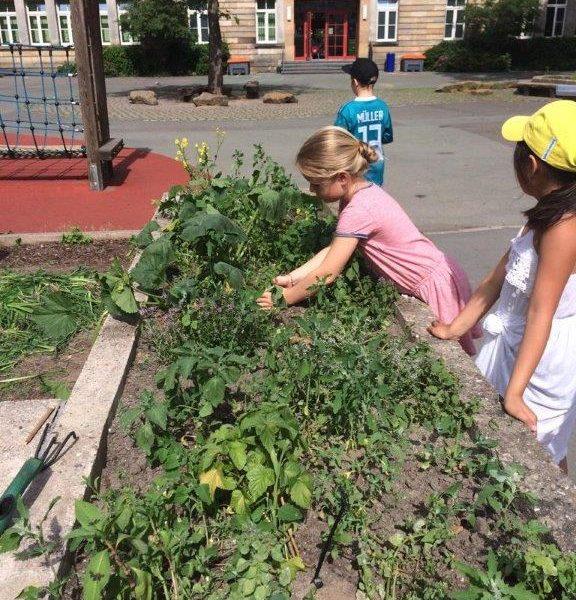 HumUs - Kinder beim einpflanzen von Pflanzen