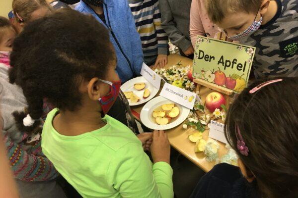 Der Apfel im Mittelpunkt der Schüler