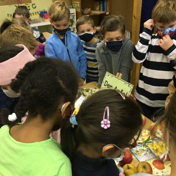 Schüler betrachten Äpfel