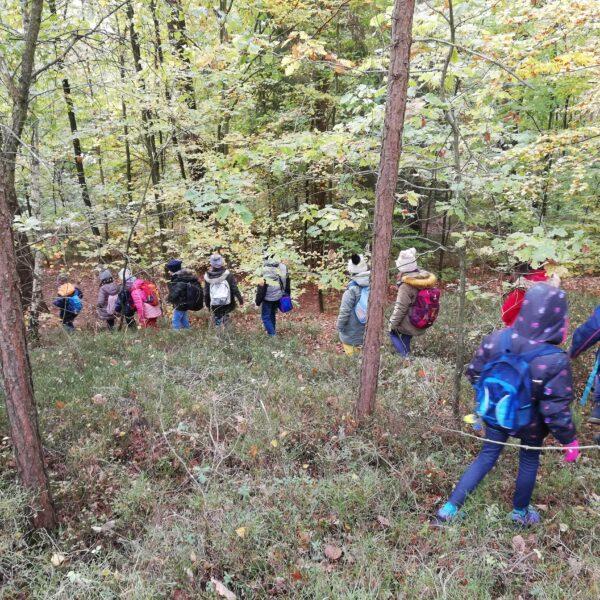 Schülergruppe durch den Wald